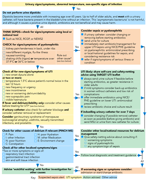 Urinary tract infections: when is it appropriate to prescribe an  antibiotic? | Implementing guidelines | Guidelines in Practice
