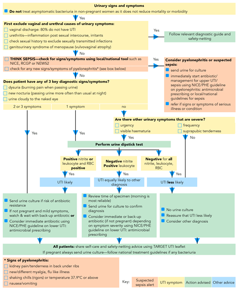 Urinary Tract Infections When Is It Appropriate To Prescribe An Antibiotic Implementing Guidelines Guidelines In Practice