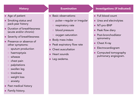 figure 1 important aspects of a clinical assessment of breathlessness