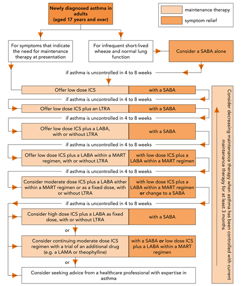 Pharmacological treatment of chronic asthma in adults aged 17 and over_GinP